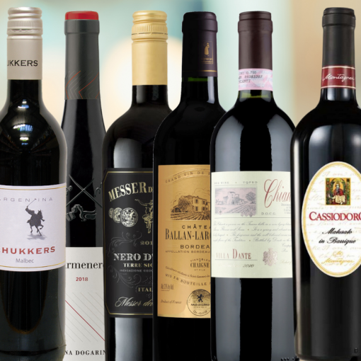 Mixed Tasting Case of 6 Red Wines