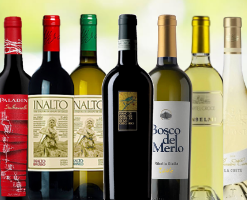 Special Offer Mixed Tasting Case of 12 Artisan Wines