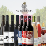Vallepicciola Drink the Winery Mixed Case