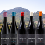 Tempel Wines South African DiscoveryCase