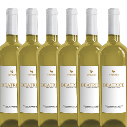 Special Offer Case of Beatrice Vermentino